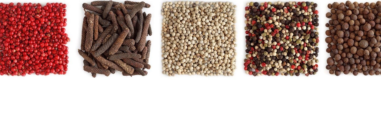 Condimenti per pasta, spezie e ragù per dare pepe (e non solo) ai tuoi piatti